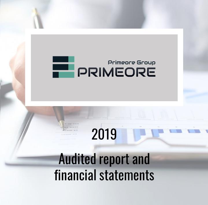 Audited annual report 2019